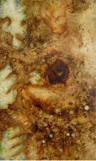 A fusão | Pintura | 2000